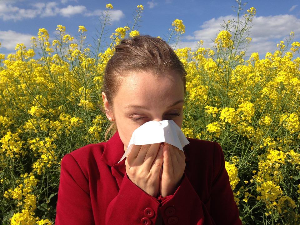 Alergia de primavera